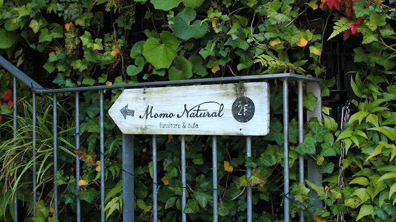 MOMO natural(モモ ナチュラル )2階への案内看板