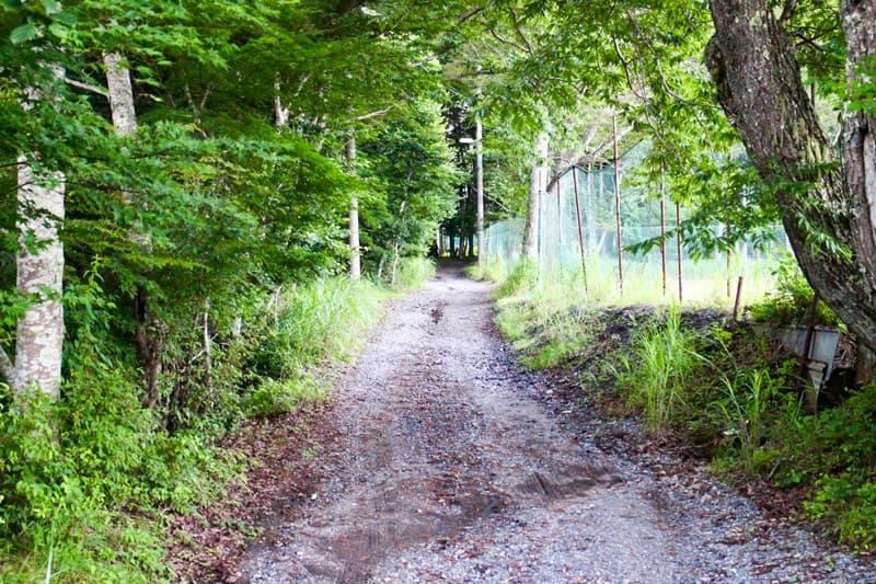 ビアッソキャンプ場への道