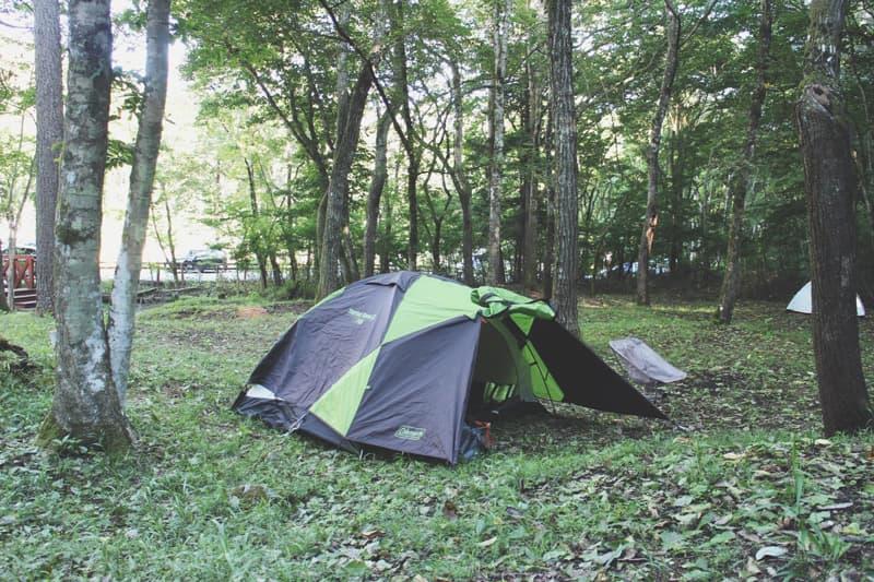 ビアッソキャンプ場のテントサイトエリア