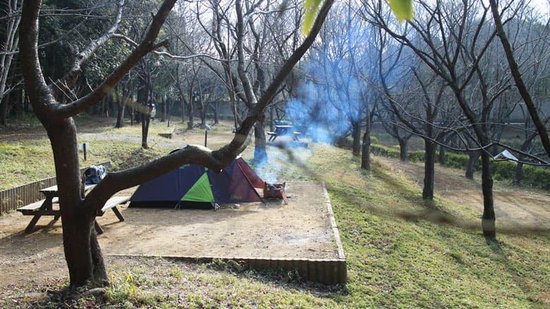 桜の森キャンプサイトでソロキャンプ